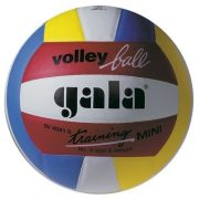 Gala Training mini 4-es röplabda